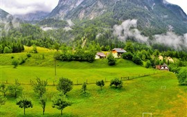 Preview wallpaper Slovenia beautiful scenery, mountains, trees, green, village, fog