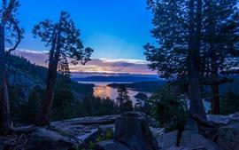 Árvores, lago, pôr do sol, Califórnia, Nevada