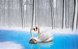 Preview wallpaper Two swans, couple, winter, snow, trees, pond