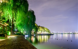 West Lake bela paisagem noturna, luzes, salgueiro