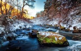 미리보기 배경 화면 겨울, 돌, 눈, 개울, 나무