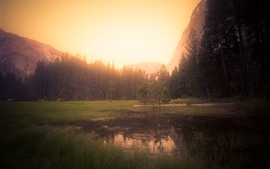Preview wallpaper Yosemite, California, USA, trees, fog, morning, sunrise
