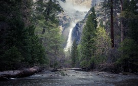 Yosemite National Park, trees, waterfall, USA
