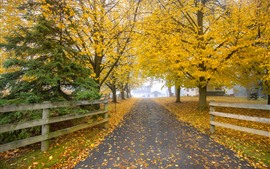 Preview wallpaper Autumn, golden leaves, road, fence, fog, morning