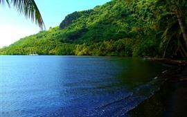 Belas paisagens tropicais, verão, mar, palmeiras