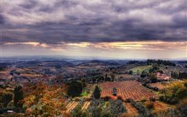 Сельская местность, деревья, поля, облака, сумерки