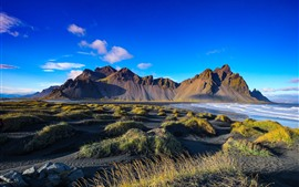 Iceland, mountains, grass, sea