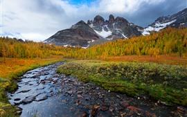 Preview wallpaper Mountains, snow, creek, rocks, trees, autumn