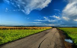 Дорога, поля, сельская местность, небо, облака