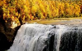 Cascadas, árboles, otoño dorado.
