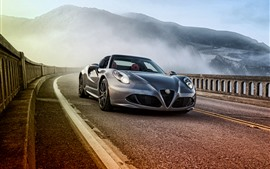 Preview wallpaper Alfa Romeo 4C silver sport car front view