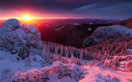 Alpes, montanhas, neve, árvores, inverno, nascer do sol