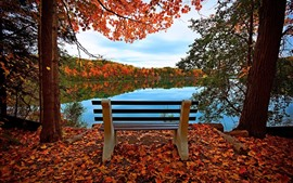 Preview wallpaper Bench, lake, red maple leaves, trees, autumn