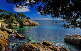Preview wallpaper Catalonia, Spain, Mediterranean Sea, trees, rocks