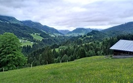 Germany, Allgau, mountains, trees, clouds, green