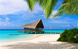 Preview wallpaper Palm trees, beach, sea, pier, tropical, resort