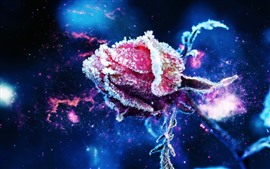 Preview wallpaper Red rose bud, frost, ice crystal, stars