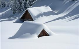 Густой снег, дом спрятан в снегу, деревья, зима