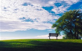 Tree, grass, green, bench, blue sky, white clouds