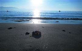 Praia, mar, pessoas, sol