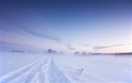 Preview wallpaper Cold winter, thick snow, white world, fog