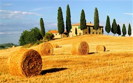 Hay bales, fields, trees, countryside, Italy