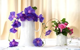 Purple morning glory, pink rose, vase