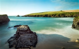 Rocks, sea, meadow, coast