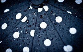 Preview wallpaper Umbrella, surface, water droplets