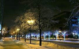 Winter, trees, snow, lights, city, street