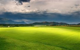 Lindos campos verdes, terras agrícolas, árvores, montanhas, nuvens