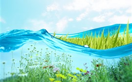 Preview wallpaper Blue water, grass, flowers, creative picture