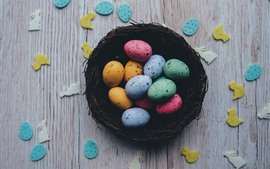 Colorful Easter eggs, nest, desktop