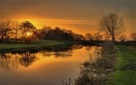 Сумерки, река, деревья, закат