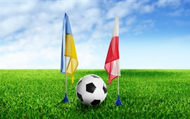 Preview wallpaper Football, flag, green grass