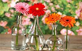 ガーベラ、花、オレンジ、黄色、赤、ガラス瓶
