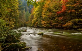 Preview wallpaper Germany, trees, river, autumn, nature scenery
