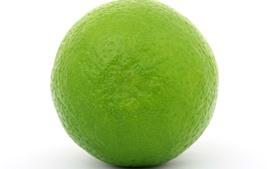 Limão verde, fundo branco