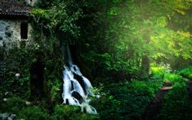 Домик, водопад, деревья, зелень, солнце