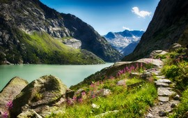 Preview wallpaper Mountains, river, stones, flowers, grass, nature landscape
