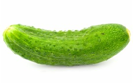 One cucumber close-up, white background