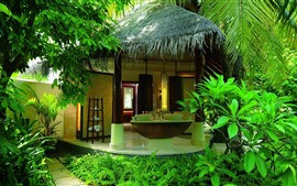 Villa, house, tropical, palm trees, green