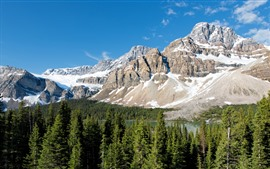 Banff National Park, mountain, snow, forest, trees, lake, Canada