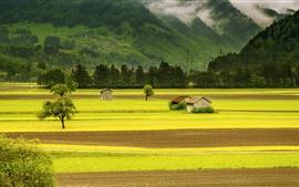 Красивые пейзажи, зеленые поля, хижины, горы, деревня
