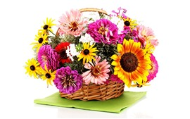 Preview wallpaper Colorful flowers, basket, white background