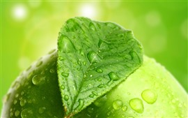 Preview wallpaper Green leaf and green apple, water droplets