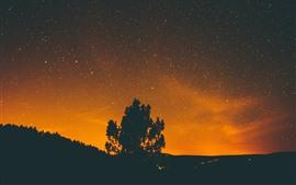 Одинокое дерево, звёздная, звёзды, силуэт, ночь
