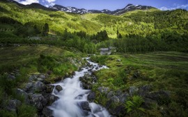 Preview wallpaper Norway, forest, creek, rocks, mountain, hut, green