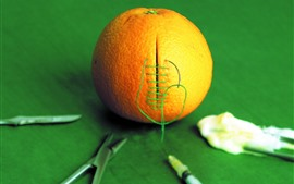 Orange, sewing, creative picture