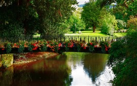 Park, bridge, flowers, river, trees, bench, green
